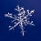 Winter-1180186 2
