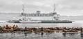 Derelict Ferry