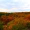 Fall in Starved Rocks