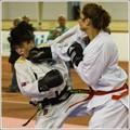 Taekwondo Slovak Open