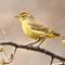 2-Teaneck Birds 12