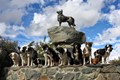At Lake Tekapo New Zealand at the monument to sheep dogs.