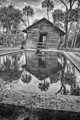 Pool-Reflections