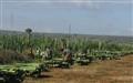 Harvesting  Sisal
