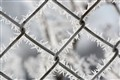 chain link frost