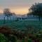 Horses Jamestown RI: