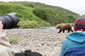 This photo was taken on the Alaska Peninsula in late June. Because of a really warm spring there was not enough water in the creek for the fish to come in so the bears kept cursing and hoping.