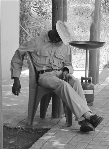 Park Employee Kruger National Park