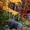 Autumn, Baxter State Park