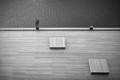 Human minimalism