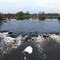 River Shannon 1: OLYMPUS DIGITAL CAMERA