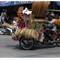 thai 2015 (13)