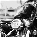 Harley en Cañuelas