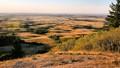 Saskatchewan's Cypress Hills