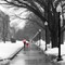 MFA Boston Snow & Rain  2319
