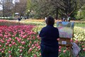 Canadian_Artist_At_Tulip_Festival