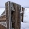 Litchfield_FrostyFenceDetail_2XS_011308_85_11_900px_reduced