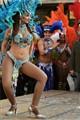 Malnate Carnival