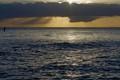 North Star Over Hawaii