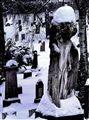 Vår Frelsers gravlund