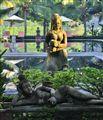 River Kwai Resort Morning