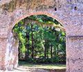 Arch Frame